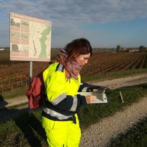 una volontaria sta compilando il report fornito da AIPo